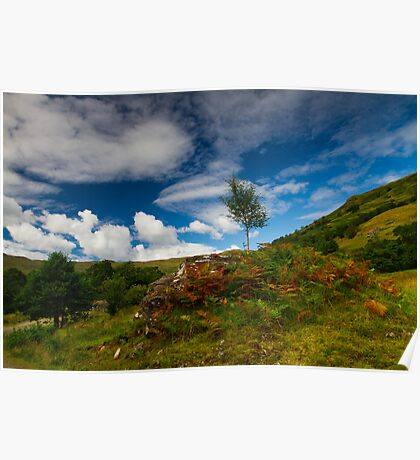 Glen Finglas autumn, Scotland Poster