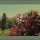 Spring flowers and trees in frame  by naturematters