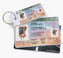 Fully Personalized pet IDs for pets by mypetdmv