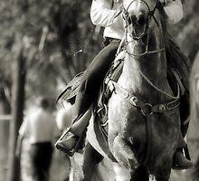 Ride'em Cowboy by Windy Rodriguez
