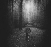 Lost in a Forest by Nicola Smith
