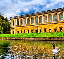 Punting on the Cam - Cambridge England by Mark Tisdale