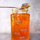 Jellyfish by Susan Littlefield