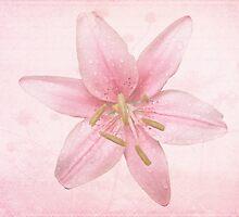 Princess Pink by MotherNature2