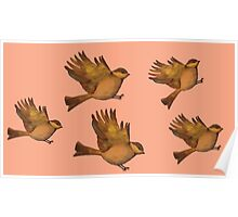 Cute Vintage bird print - flying gold sparrows Poster