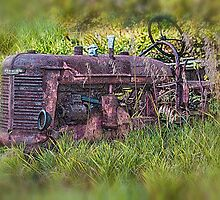 Retired Tractor by Dennis Granzow