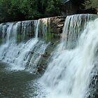 Chagrin Falls by Lynn Gedeon
