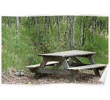 Weathered Picnic Table in a Forest Poster