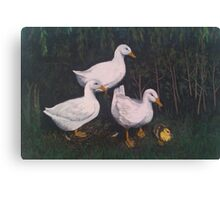 Babysitting Ducks Canvas Print
