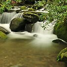 jazz in the smokies by dc witmer