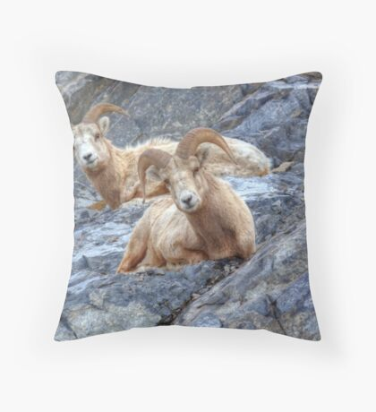 Caught you lookn' Throw Pillow