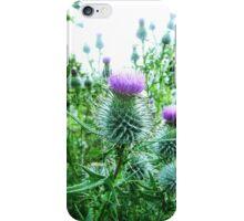 thistle's iPhone Case/Skin