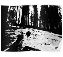 Black and White Snow  Poster