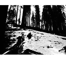 Black and White Snow  Photographic Print