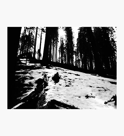 Black and White Snow  Photographic Print