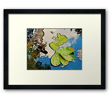 Lily Pad Frogger Framed Print