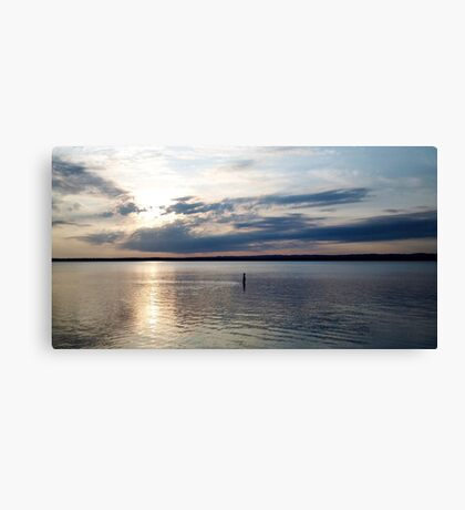 Connected in Nature Canvas Print