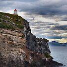 Dunedin NZ by Bami