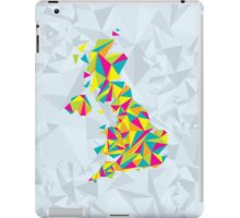 Abstract United Kingdom Bright Earth iPad Case/Skin