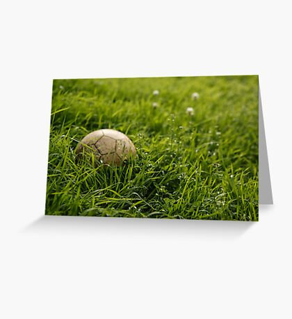 Time to cut the grass .... Greeting Card