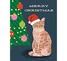 Merry Christmas Tabby Orange cat cute gift for cat person cat christmas Photographic Print
