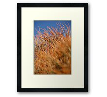 Contrast wow  Framed Print