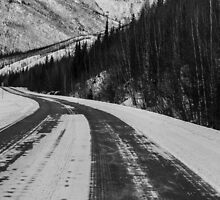 Winding road , Fairbanks , Alaska  by Nina  Matthews Photography
