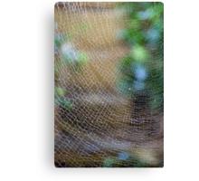 Golden Silk Orb Weaver's Web Design Magic Canvas Print