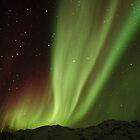 The Northern Light , Alaska USA.( Sold 3 image YAY )  by Nina  Matthews Photography