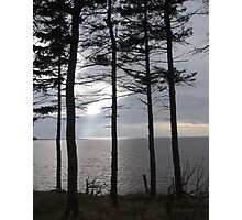 Orwell Bay, Prince Edward Island Photographic Print