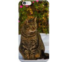 ZENA - THE SCOTTISH TIGER iPhone Case/Skin