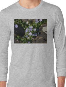 Light Blue Daisies Long Sleeve T-Shirt