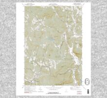 USGS Topo Map  Vermont VT Cavendish 337361 1972 24000 Kids Tee