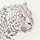 The Intellectual Leopard by BelleFlores