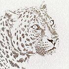 The Intellectual Leopard by Paula Belle Flores