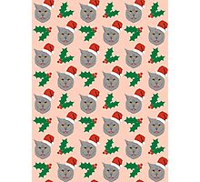 Christmas Cat mistletoe and holly cute cat pattern for pet lovers and cat ladies Photographic Print