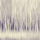 Forest Trees Abstract in Blue Ginger by Natalie Kinnear