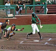 Fort Wayne Tincaps by Vonnie Murfin