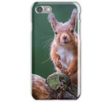 Red Squirrel in forest iPhone Case/Skin