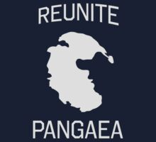 Reunite Pangaea by trends