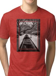 Snowblind (Colorless Section) Tri-blend T-Shirt