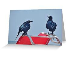 Bird Beach Talk Greeting Card