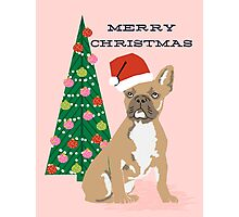 Cute Pug Christmas Tree funny dog art for small dog owners dog person gifts Photographic Print