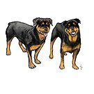 Rotties by Jan Szymczuk