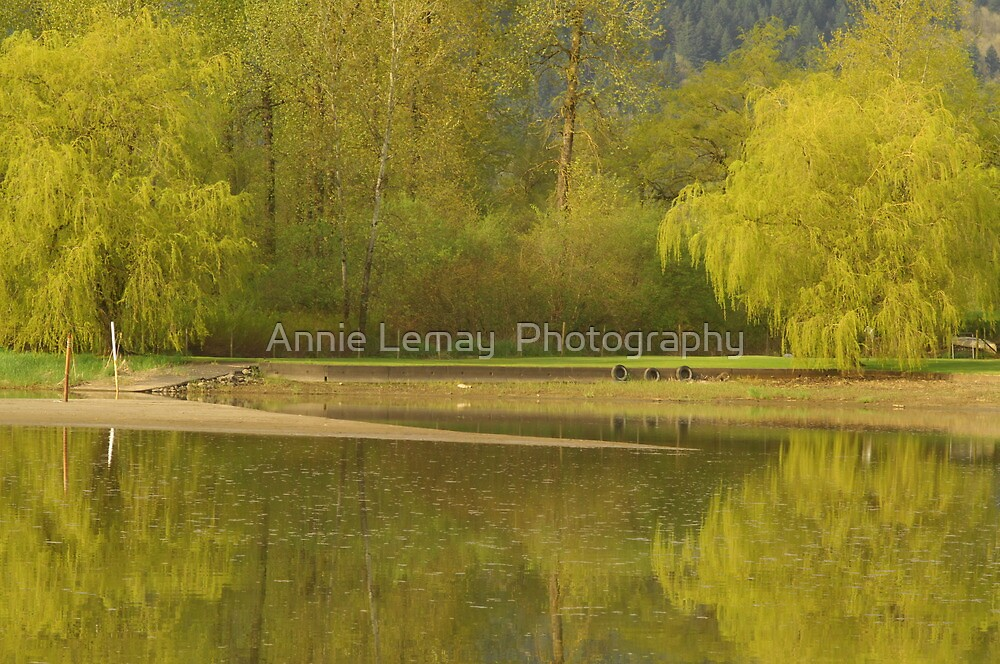Straight from the Heart by Annie Lemay  Photography