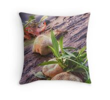 Manon on the Charles Throw Pillow