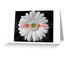 Color Belt Greeting Card