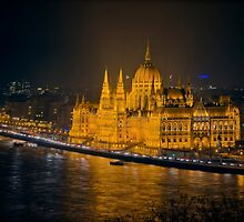 Hungarian Parliament Night Color by joancarroll