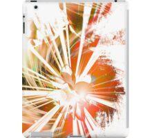 Lotus Buddha (v.Warm) iPad Case/Skin