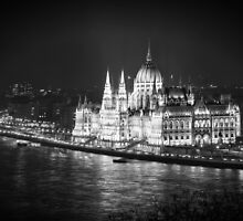 Hungarian Parliament Night BW by joancarroll